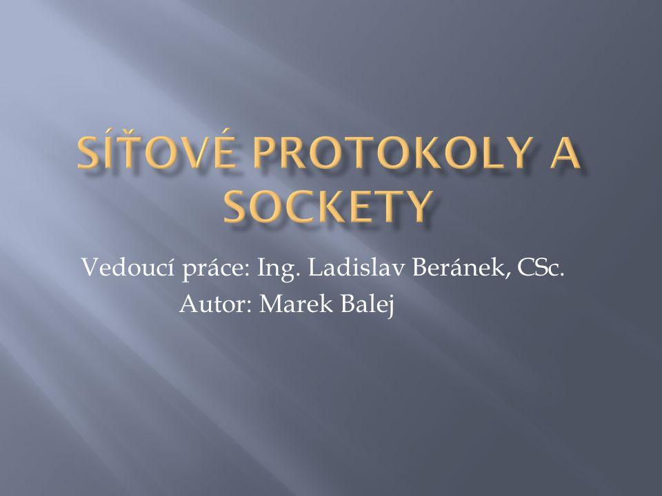 Vedoucí práce: Ing. Ladislav Beránek, CSc. Autor: Marek Balej