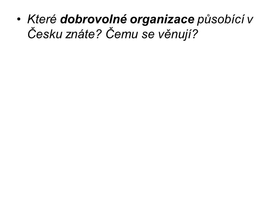Které dobrovolné organizace působící v Česku znáte? Čemu se věnují?
