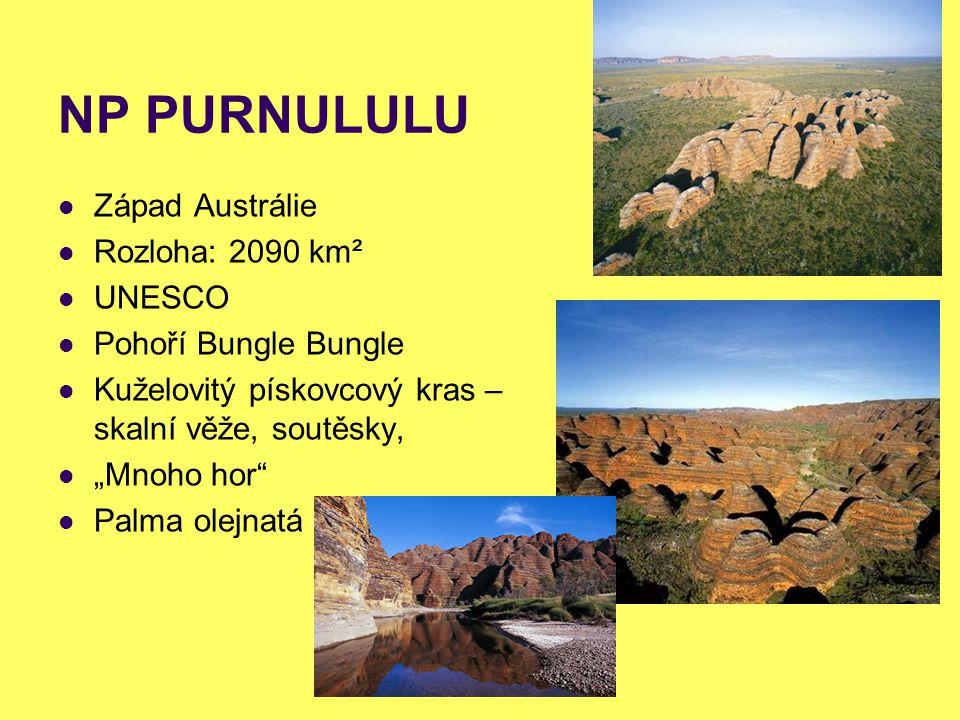 """NP PURNULULU Západ Austrálie Rozloha: 2090 km² UNESCO Pohoří Bungle Bungle Kuželovitý pískovcový kras – skalní věže, soutěsky, """"Mnoho hor"""" Palma olejn"""