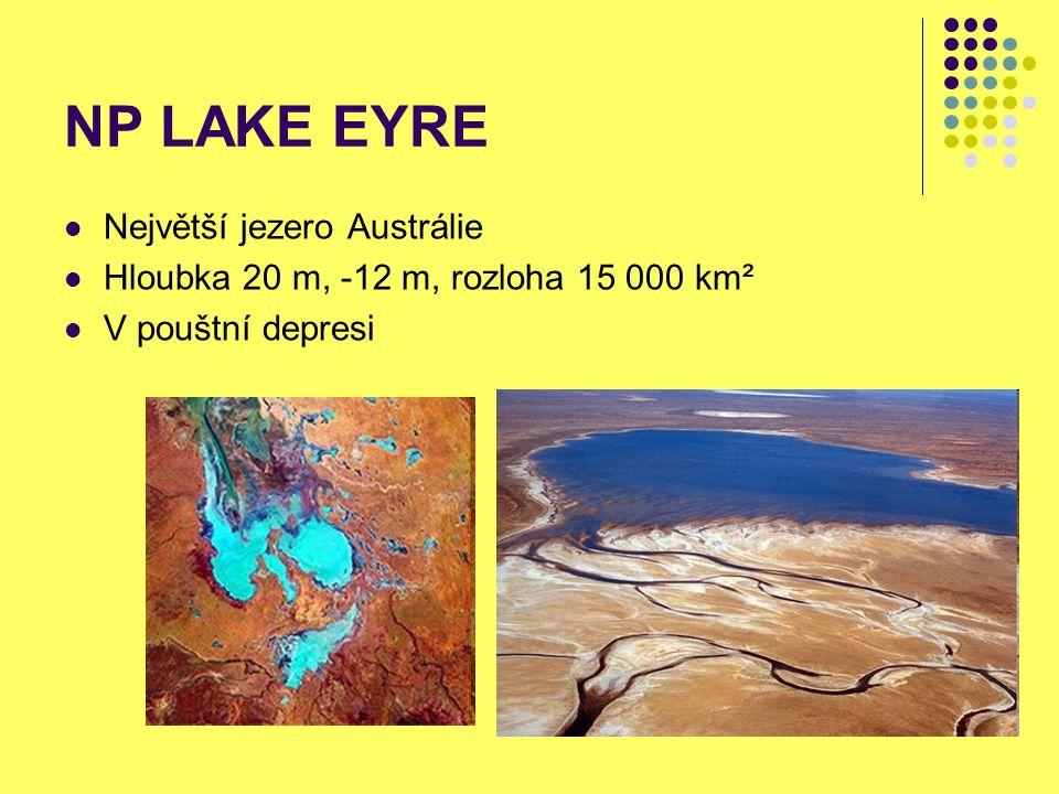 NP LAKE EYRE Největší jezero Austrálie Hloubka 20 m, -12 m, rozloha 15 000 km² V pouštní depresi