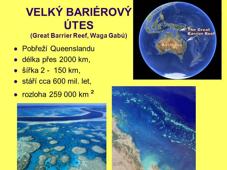 VELKÝ BARIÉROVÝ ÚTES (Great Barrier Reef, Waga Gabú) Pobřeží Queenslandu délka přes 2000 km, šířka 2 - 150 km, stáří cca 600 mil. let, rozloha 259 000
