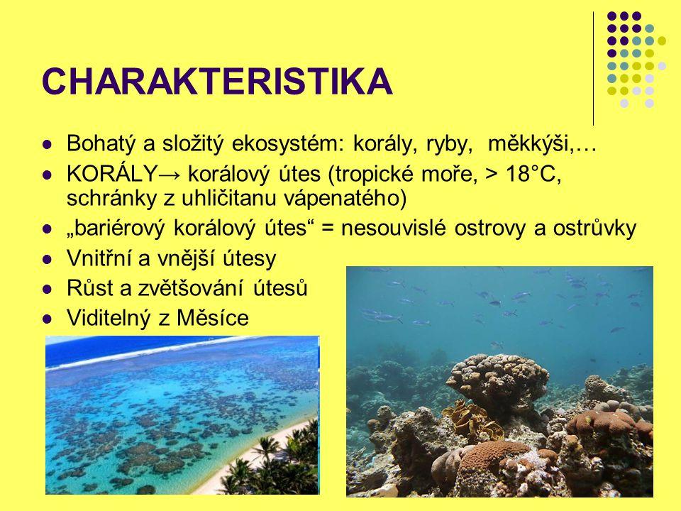 """CHARAKTERISTIKA Bohatý a složitý ekosystém: korály, ryby, měkkýši,… KORÁLY→ korálový útes (tropické moře, > 18°C, schránky z uhličitanu vápenatého) """"b"""
