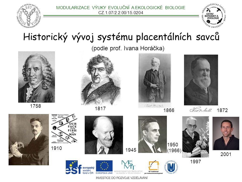 Historický vývoj systému placentálních savců (podle prof. Ivana Horáčka) MODULARIZACE VÝUKY EVOLUČNÍ A EKOLOGICKÉ BIOLOGIE CZ.1.07/2.2.00/15.0204 1945