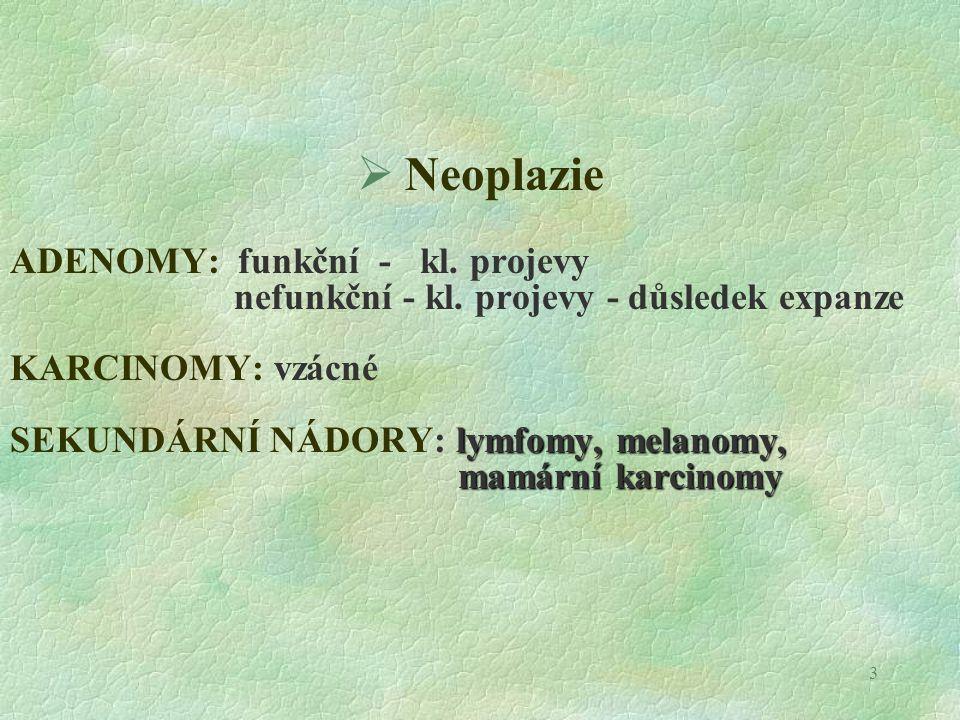 14 Dřeň nadledvin  Hyperplazie  Neoplazie (multipní enokrinní neoplazie, MEN)  Feochromocytom  Feochromocytom (Ca, Bo)  Ganglioneurom  Neuroblastom
