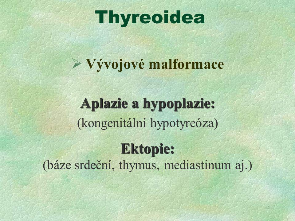 5 Thyreoidea  Vývojové malformace Aplazie a hypoplazie: (kongenitální hypotyreóza)Ektopie: (báze srdeční, thymus, mediastinum aj.)