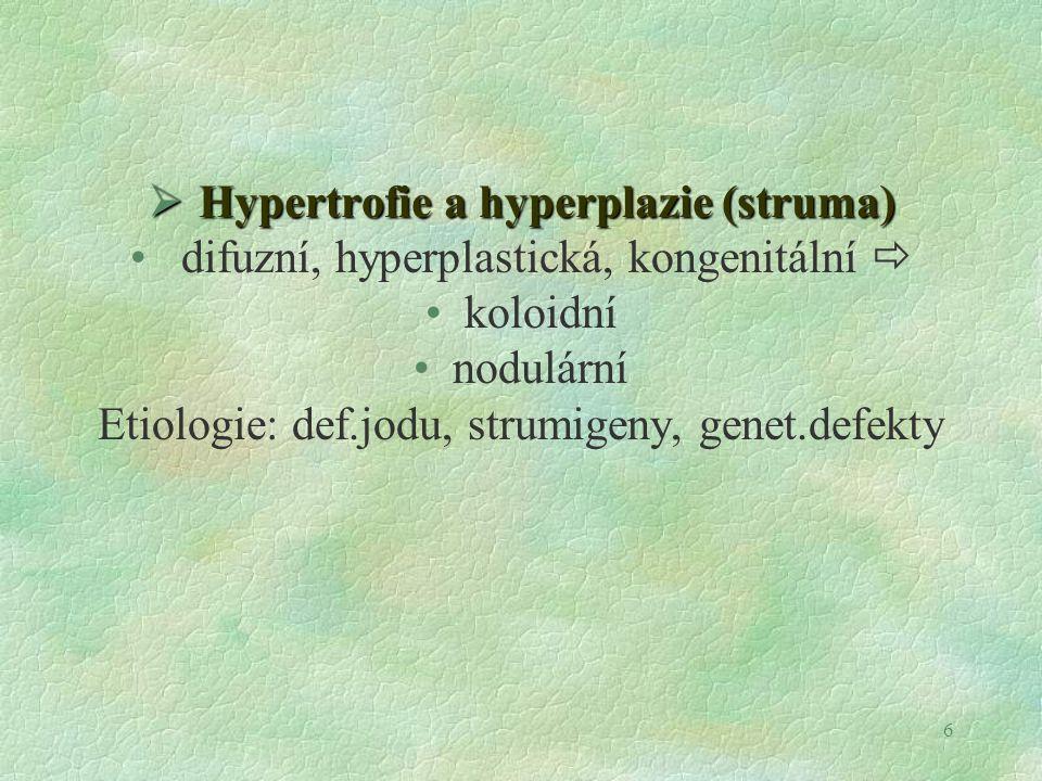 6  Hypertrofie a hyperplazie (struma) difuzní, hyperplastická, kongenitální  koloidní nodulární Etiologie: def.jodu, strumigeny, genet.defekty