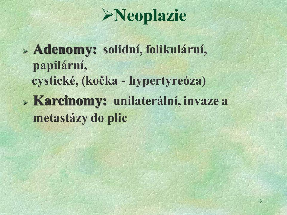 9  Neoplazie  Adenomy:  Adenomy: solidní, folikulární, papilární, cystické, (kočka - hypertyreóza)  Karcinomy:  Karcinomy: unilaterální, invaze a metastázy do plic