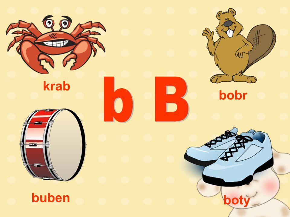 bobr krab buben boty
