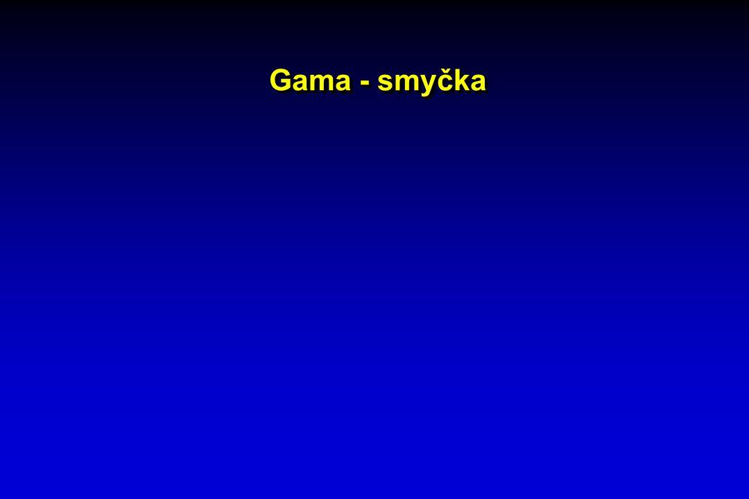 Gama - smyčka
