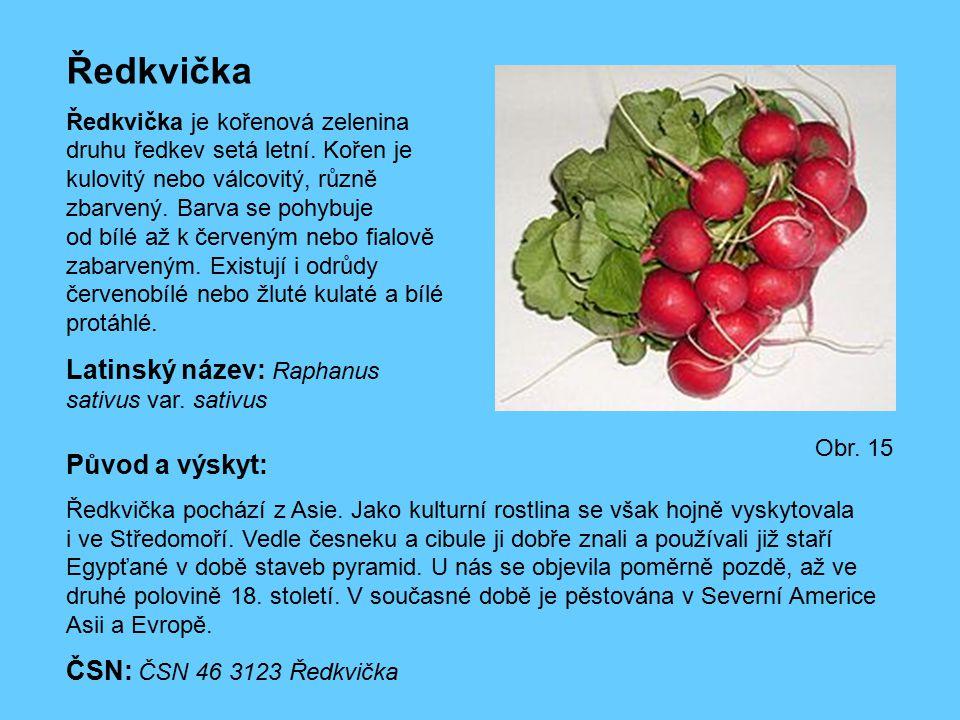 Ředkvička Ředkvička je kořenová zelenina druhu ředkev setá letní. Kořen je kulovitý nebo válcovitý, různě zbarvený. Barva se pohybuje od bílé až k čer
