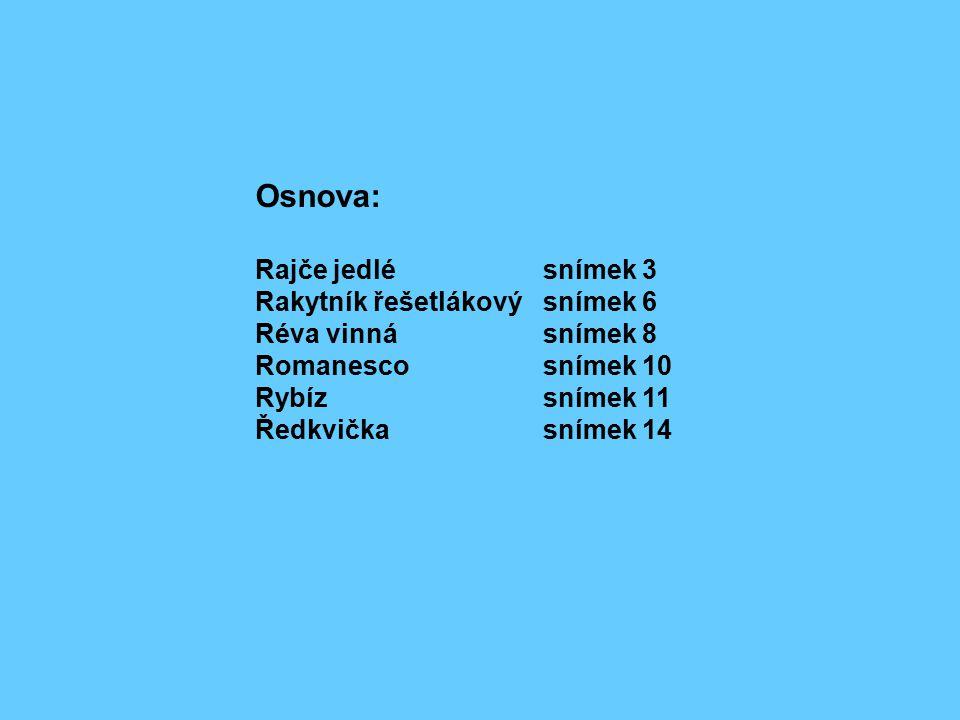 Osnova: Rajče jedlésnímek 3 Rakytník řešetlákový snímek 6 Réva vinnásnímek 8 Romanescosnímek 10 Rybízsnímek 11 Ředkvičkasnímek 14