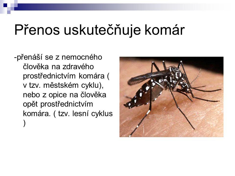 Přenos uskutečňuje komár -přenáší se z nemocného člověka na zdravého prostřednictvím komára ( v tzv. městském cyklu), nebo z opice na člověka opět pro