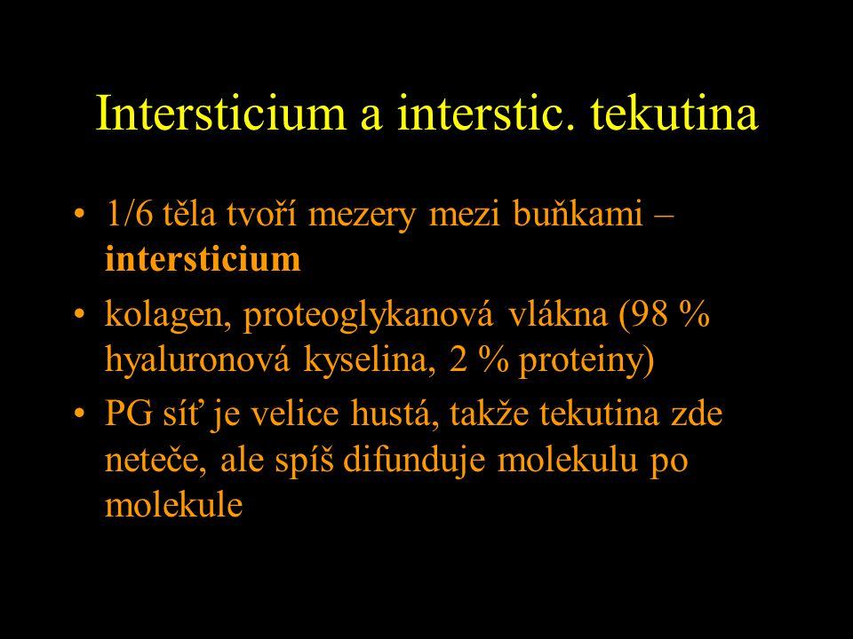 Intersticium a interstic. tekutina 1/6 těla tvoří mezery mezi buňkami – intersticium kolagen, proteoglykanová vlákna (98 % hyaluronová kyselina, 2 % p
