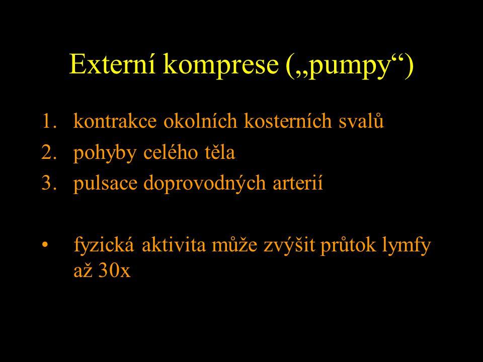 """Externí komprese (""""pumpy"""") 1.kontrakce okolních kosterních svalů 2.pohyby celého těla 3.pulsace doprovodných arterií fyzická aktivita může zvýšit průt"""
