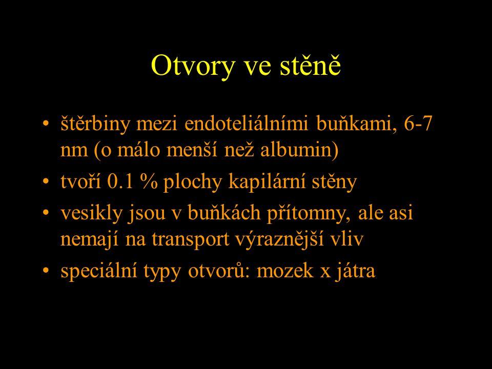 II. Lymfatický systém