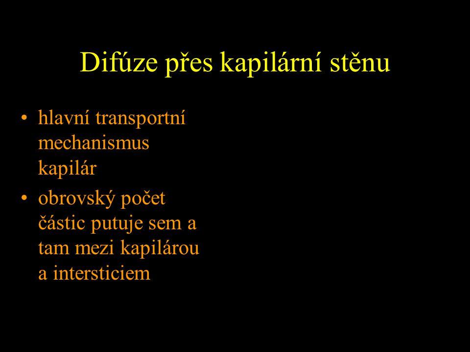 Anatomie lymfatických cest I.