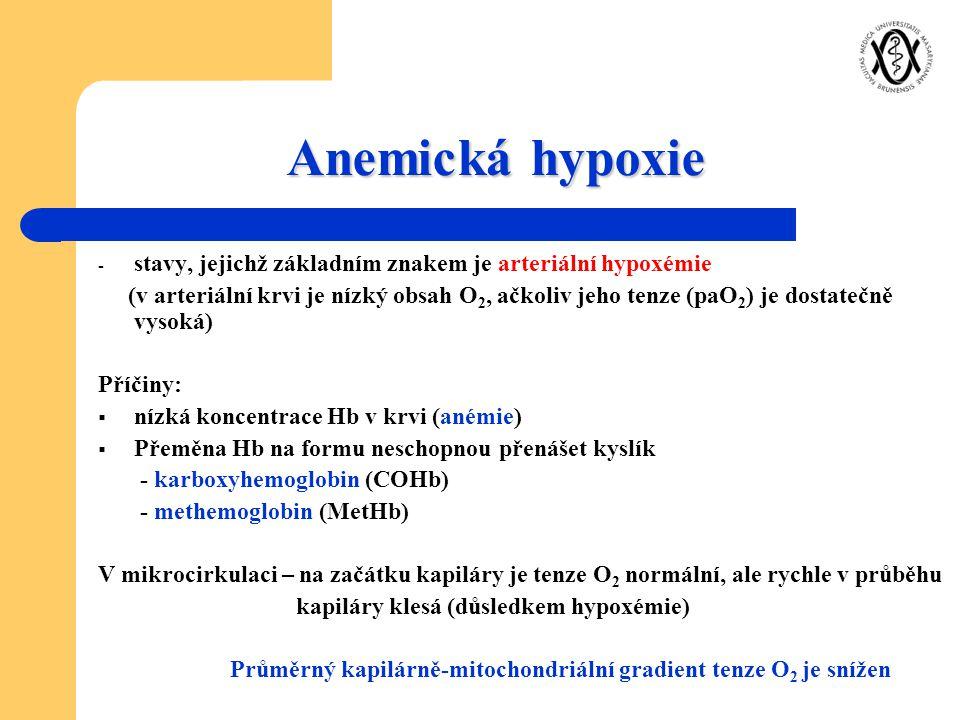 Anemická hypoxie - stavy, jejichž základním znakem je arteriální hypoxémie (v arteriální krvi je nízký obsah O 2, ačkoliv jeho tenze (paO 2 ) je dosta