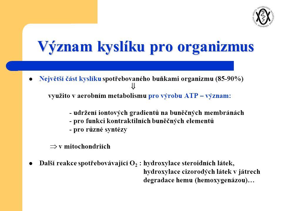 Význam kyslíku pro organizmus Největší část kyslíku spotřebovaného buňkami organizmu (85-90%)  využito v aerobním metabolismu pro výrobu ATP – význam