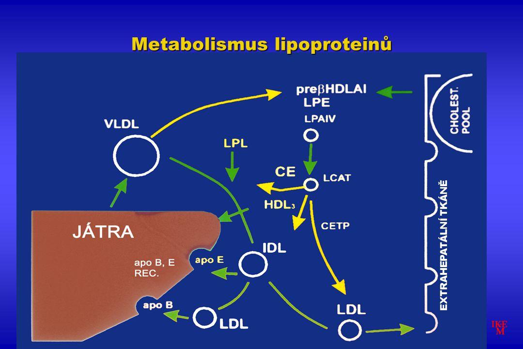 EXTRAHEPATÁLNÍ TKÁNĚ Metabolismus lipoproteinů