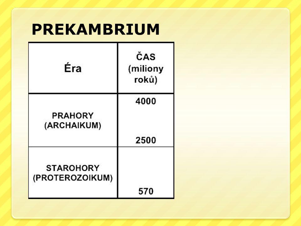 PREKAMBRIUM