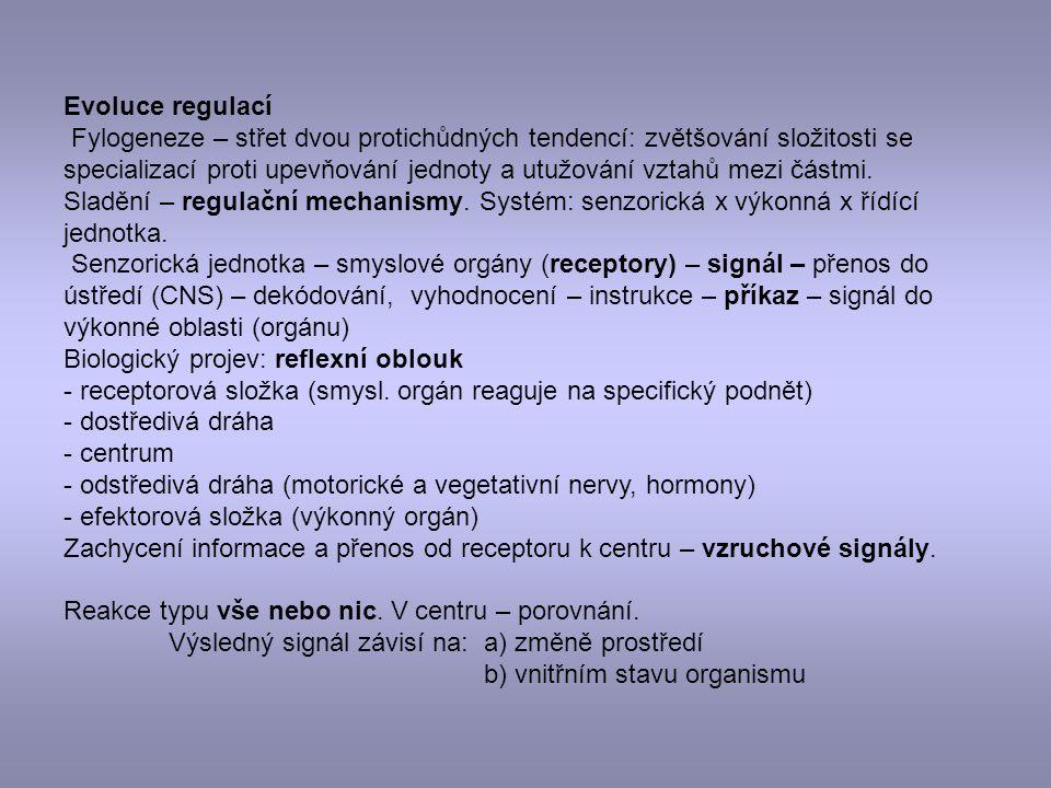 Organizace a funkce nervových soustav V průběhu fylogeneze od jednoduchých ke složitějším.