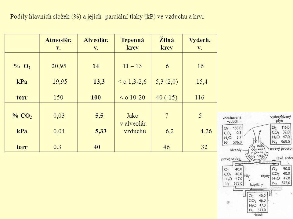 Podíly hlavních složek (%) a jejich parciální tlaky (kP) ve vzduchu a krvi Atmosfér. v. Alveolár. v. Tepenná krev Žilná krev Vydech. v. % O 2 kPa torr