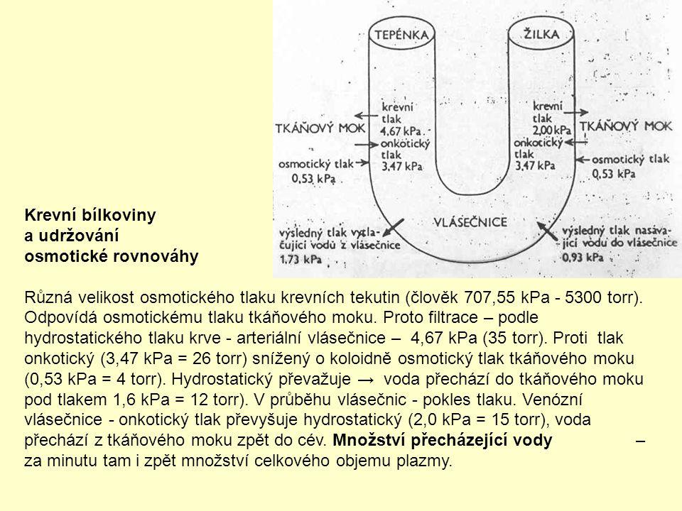Krevní bílkoviny a udržování osmotické rovnováhy Různá velikost osmotického tlaku krevních tekutin (člověk 707,55 kPa - 5300 torr). Odpovídá osmotické