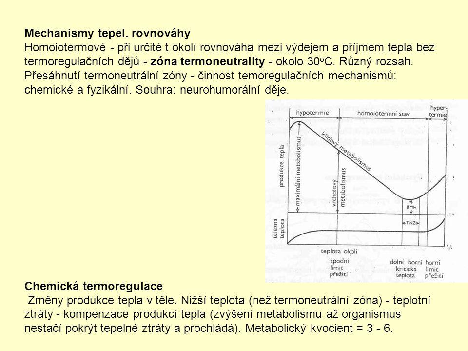 Mechanismy tepel. rovnováhy Homoiotermové - při určité t okolí rovnováha mezi výdejem a příjmem tepla bez termoregulačních dějů - zóna termoneutrality