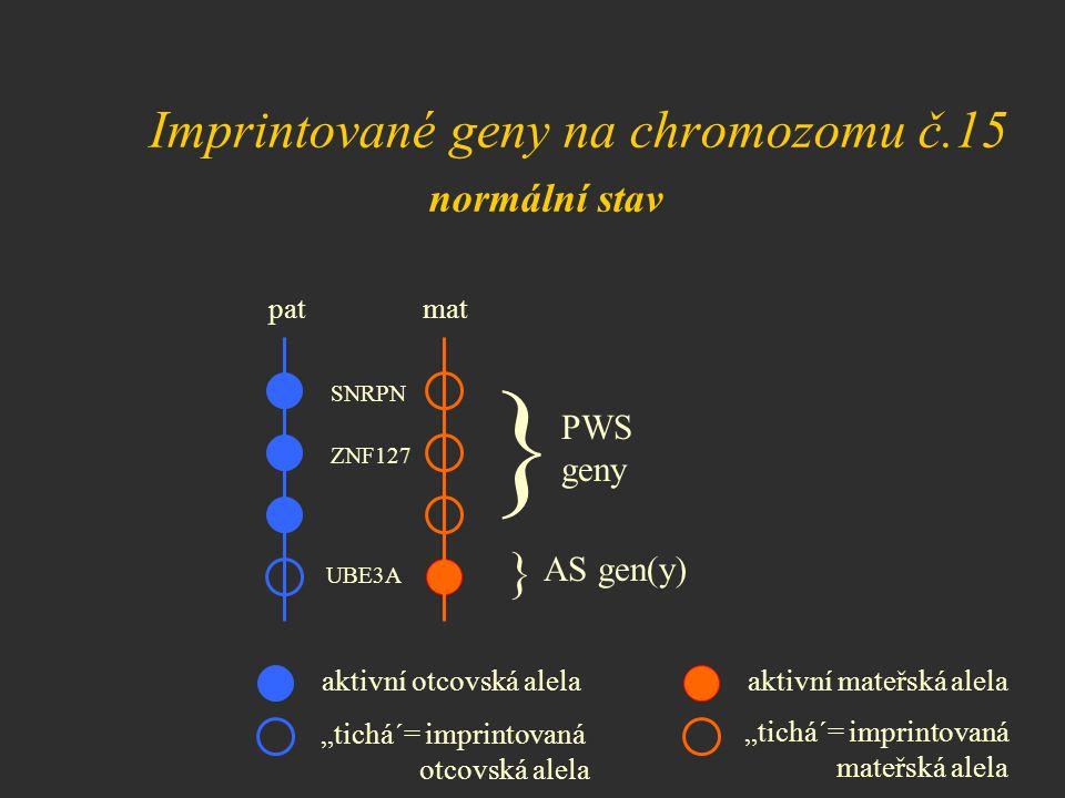 """Imprintované geny na chromozomu č.15 normální stav pat mat SNRPN ZNF127 } } PWS geny AS gen(y) aktivní otcovská alelaaktivní mateřská alela """"tichá´= i"""
