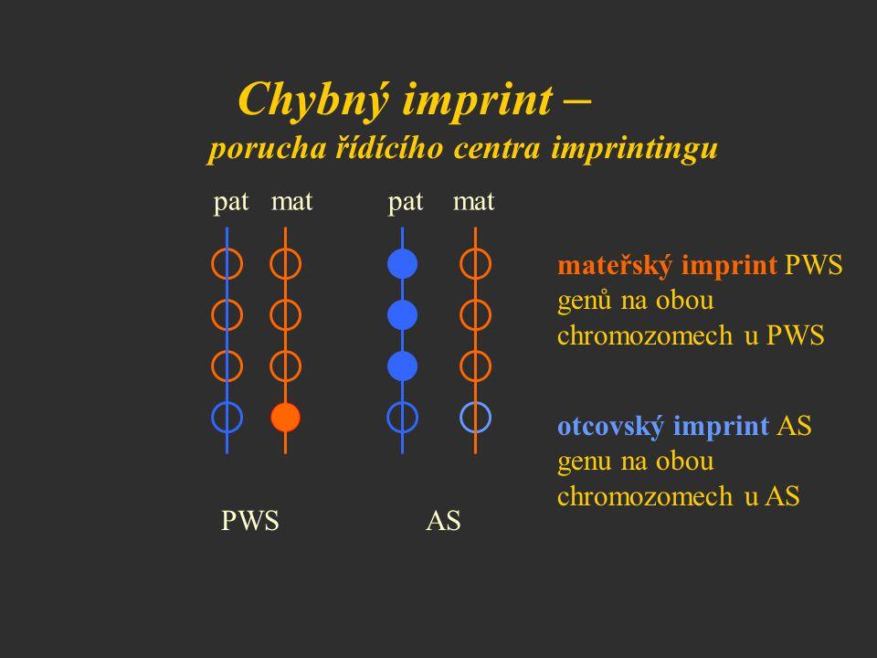 Chybný imprint – porucha řídícího centra imprintingu pat mat PWS AS mateřský imprint PWS genů na obou chromozomech u PWS otcovský imprint AS genu na o