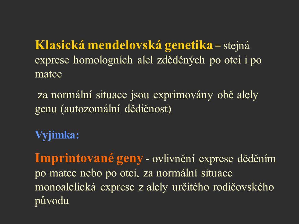 Klasická mendelovská genetika = stejná exprese homologních alel zděděných po otci i po matce za normální situace jsou exprimovány obě alely genu (auto