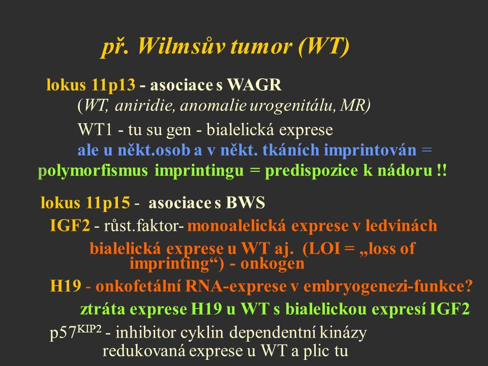př. Wilmsův tumor (WT) lokus 11p13 - asociace s WAGR (WT, aniridie, anomalie urogenitálu, MR) WT1 - tu su gen - bialelická exprese ale u někt.osob a v
