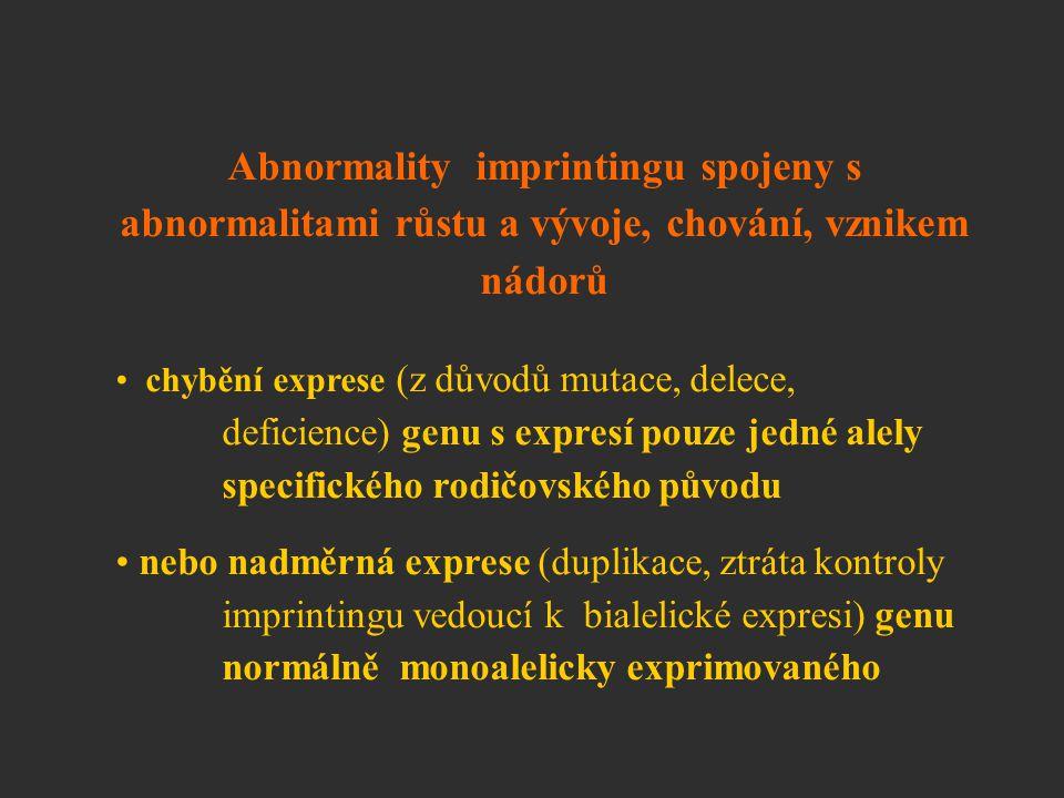 Abnormality imprintingu spojeny s abnormalitami růstu a vývoje, chování, vznikem nádorů chybění exprese (z důvodů mutace, delece, deficience) genu s e