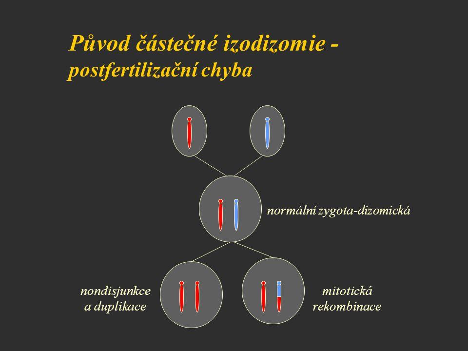 Původ částečné izodizomie - postfertilizační chyba mitotická rekombinace nondisjunkce a duplikace normální zygota-dizomická