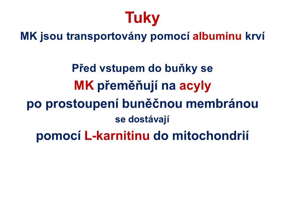 Tuky MK jsou transportovány pomocí albuminu krví Před vstupem do buňky se MK přeměňují na acyly po prostoupení buněčnou membránou se dostávají pomocí