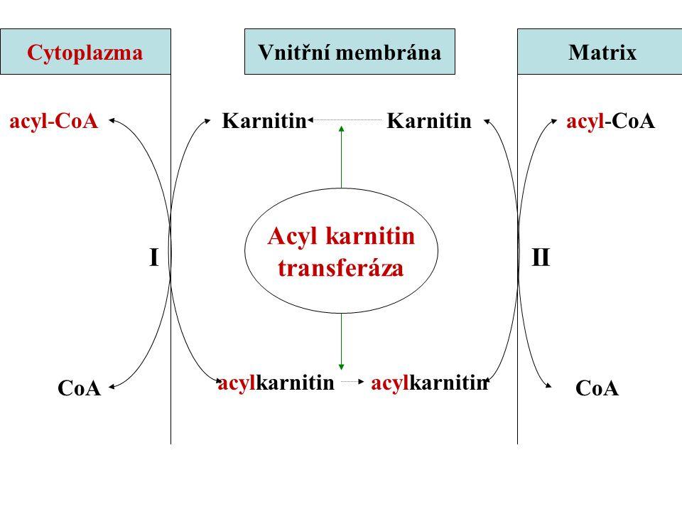 acyl-CoA CoA Karnitin acylkarnitin CytoplazmaVnitřní membránaMatrix III Acyl karnitin transferáza
