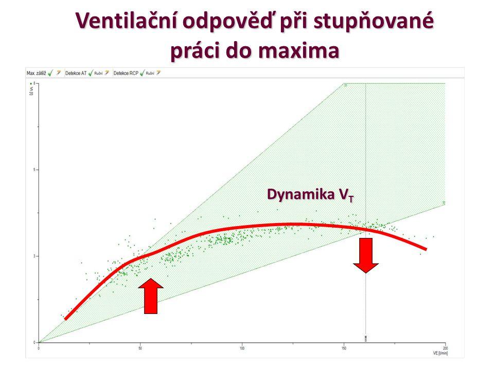 Ventilační odpověď při stupňované práci do maxima Dynamika V T