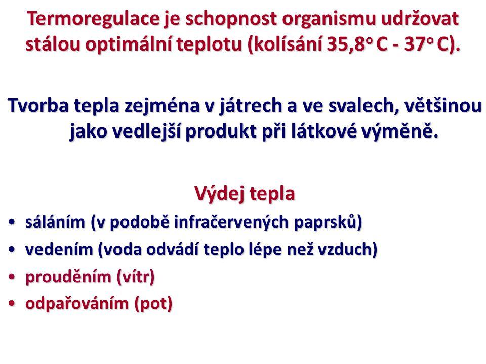 Termoregulace je schopnost organismu udržovat stálou optimální teplotu (kolísání 35,8 o C - 37 o C). Tvorba tepla zejména v játrech a ve svalech, větš