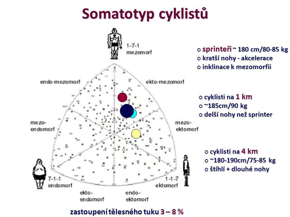 Somatotyp cyklistů o sprinteři ~ 180 cm/80-85 kg o kratší nohy - akcelerace o inklinace k mezomorfii o cyklisti na 1 km o ~185cm/90 kg o delší nohy ne