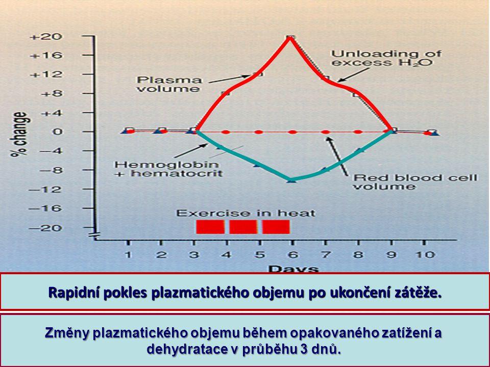 Změny plazmatického objemu během opakovaného zatížení a dehydratace v průběhu 3 dnů. Rapidní pokles plazmatického objemu po ukončení zátěže.