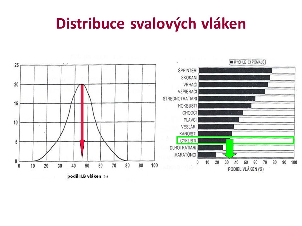 Specifikace a nároky závodních etap Rovina Horská etapa Časovka Lucia et al., 2001) ( Lucia et al., 2001)