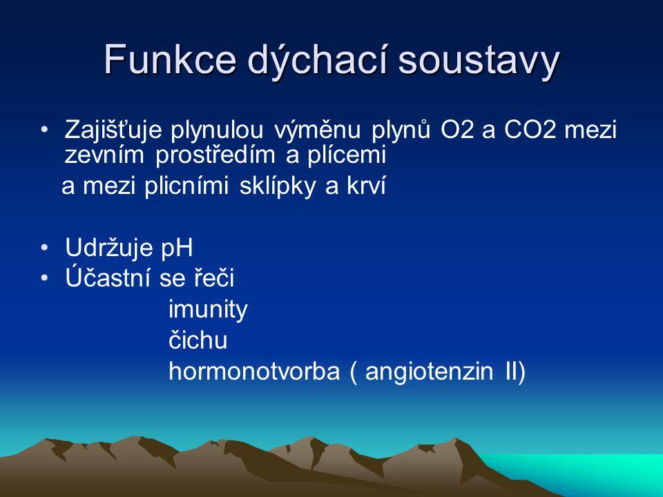 Funkce dýchací soustavy Zajišťuje plynulou výměnu plynů O2 a CO2 mezi zevním prostředím a plícemi a mezi plicními sklípky a krví Udržuje pH Účastní se