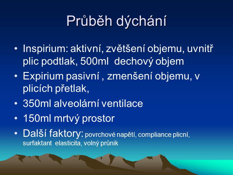 Průběh dýchání Inspirium: aktivní, zvětšení objemu, uvnitř plic podtlak, 500ml dechový objem Expirium pasivní, zmenšení objemu, v plicích přetlak, 350
