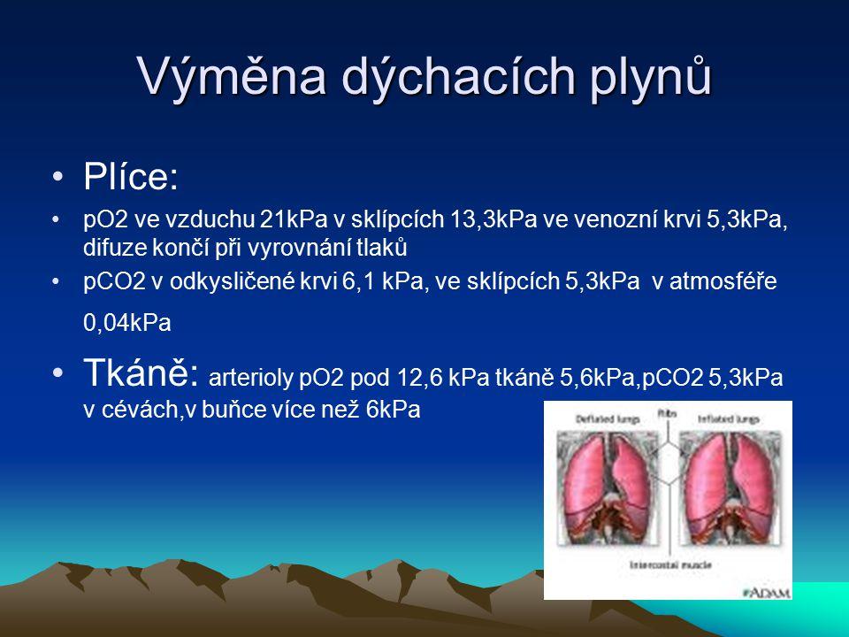 Výměna dýchacích plynů Plíce: pO2 ve vzduchu 21kPa v sklípcích 13,3kPa ve venozní krvi 5,3kPa, difuze končí při vyrovnání tlaků pCO2 v odkysličené krv