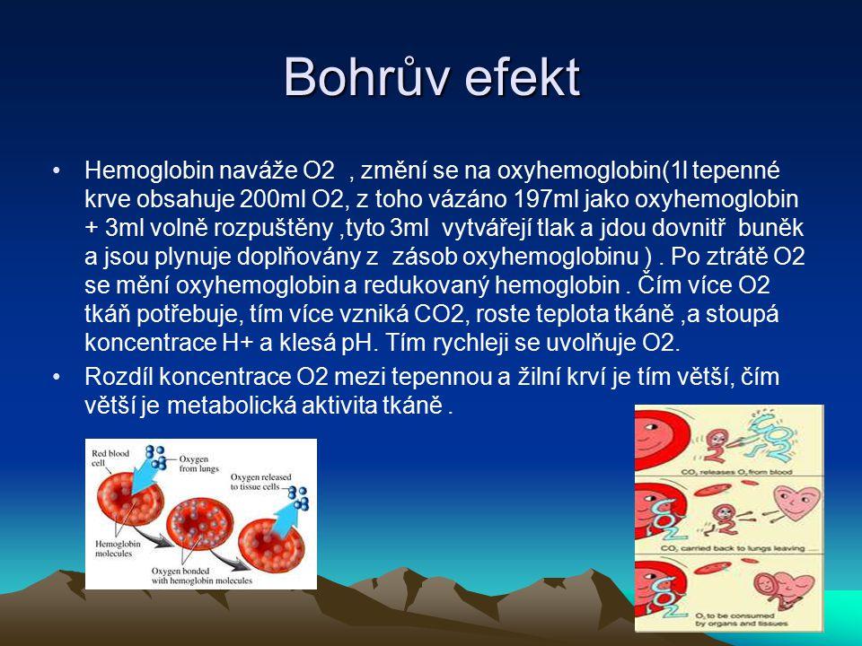 Bohrův efekt Hemoglobin naváže O2, změní se na oxyhemoglobin(1l tepenné krve obsahuje 200ml O2, z toho vázáno 197ml jako oxyhemoglobin + 3ml volně roz