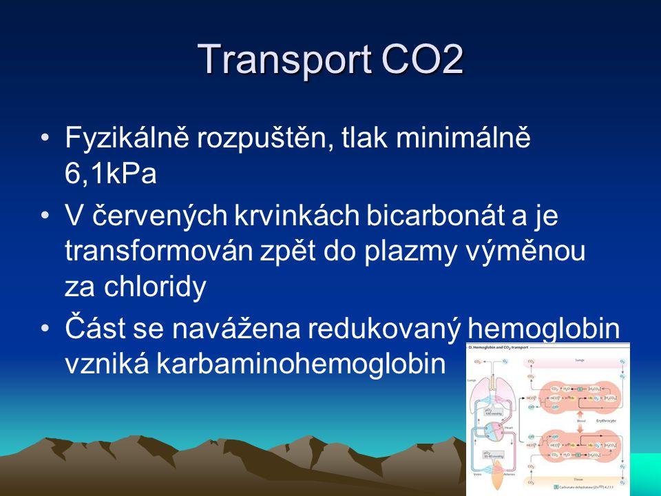 Transport CO2 Fyzikálně rozpuštěn, tlak minimálně 6,1kPa V červených krvinkách bicarbonát a je transformován zpět do plazmy výměnou za chloridy Část s