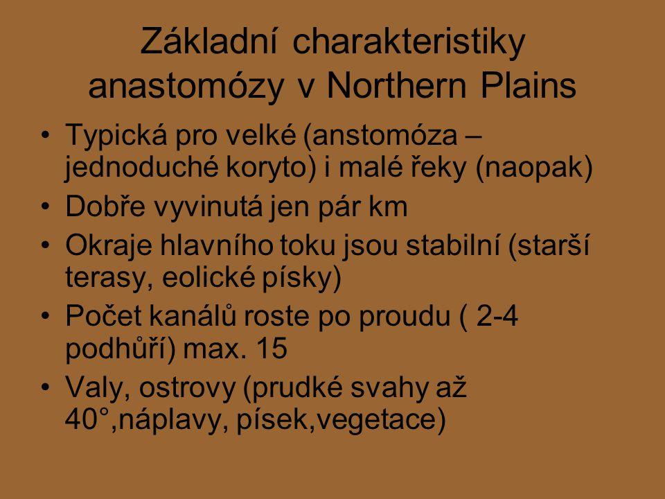 Základní charakteristiky anastomózy v Northern Plains Typická pro velké (anstomóza – jednoduché koryto) i malé řeky (naopak) Dobře vyvinutá jen pár km