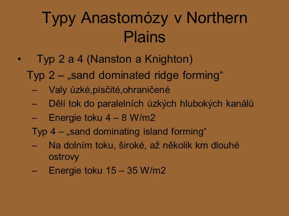 """Typy Anastomózy v Northern Plains Typ 2 a 4 (Nanston a Knighton) Typ 2 – """"sand dominated ridge forming –Valy úzké,písčité,ohraničené –Dělí tok do paralelních úzkých hlubokých kanálů –Energie toku 4 – 8 W/m2 Typ 4 – """"sand dominating island forming –Na dolním toku, široké, až několik km dlouhé ostrovy –Energie toku 15 – 35 W/m2"""