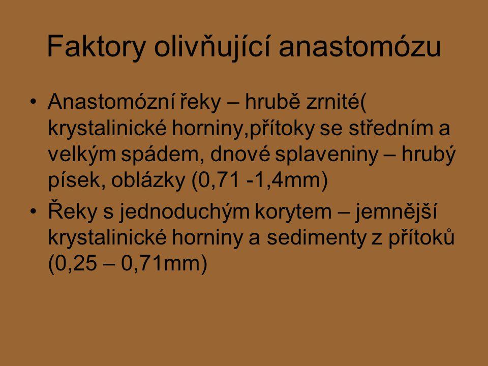 Faktory olivňující anastomózu Anastomózní řeky – hrubě zrnité( krystalinické horniny,přítoky se středním a velkým spádem, dnové splaveniny – hrubý písek, oblázky (0,71 -1,4mm) Řeky s jednoduchým korytem – jemnější krystalinické horniny a sedimenty z přítoků (0,25 – 0,71mm)