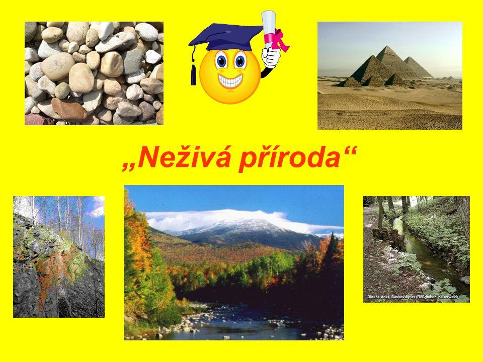 Co nazýváme neživé přírodniny? 1.Voda, vzduch,půda, slunce 2.Písek, voda, kameny, silnice 12345
